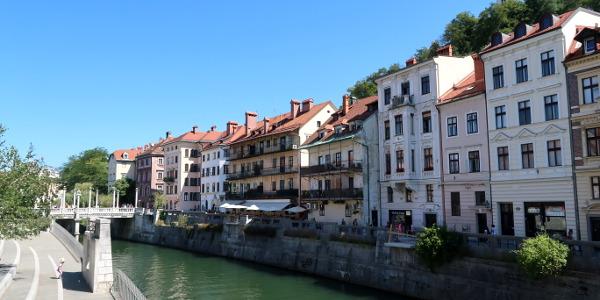 Faut-il être polyglotte pour voyager ?