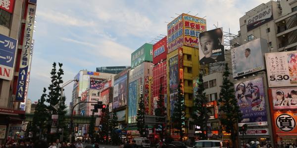 Voyage au Japoin : le bilan
