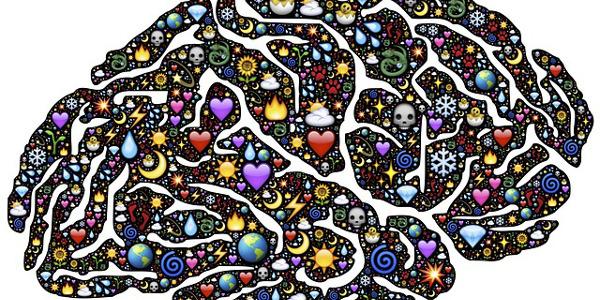 Comment le cerveau apprend