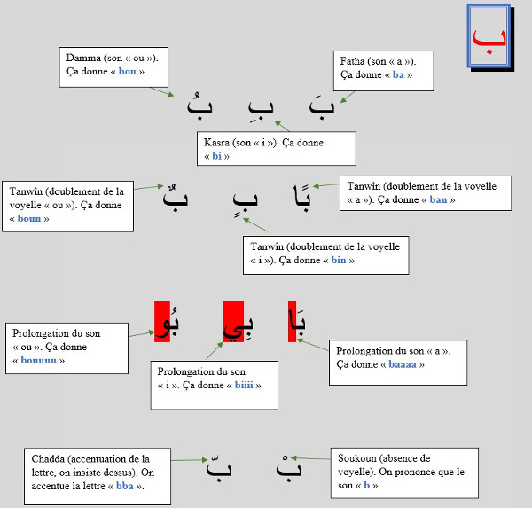 Règles de lecture et d'écriture de l'arabe
